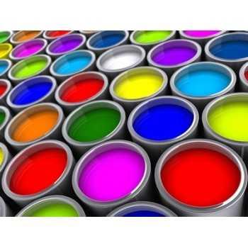 Option peinture constructeur